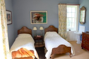 IMG_9960_blue_bedroom